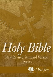 New Revised Standard Version - NRSV