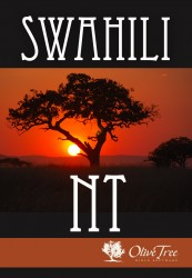 Swahili Bible: Swahili New Testament