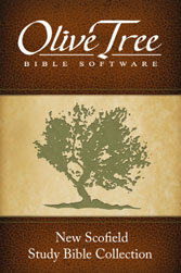 New Scofield Study Bible Notes with KJV