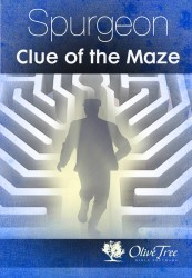 Clue of the Maze, The