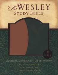Wesley Study Bible Notes