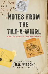 Notes From The Tilt-A-Whirl: Wide-Eyed Wonder in God