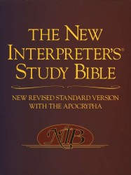 New Interpreter's Study Bible Notes