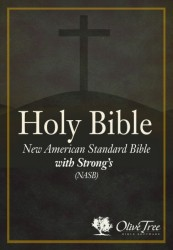 New American Standard Bible with Strong