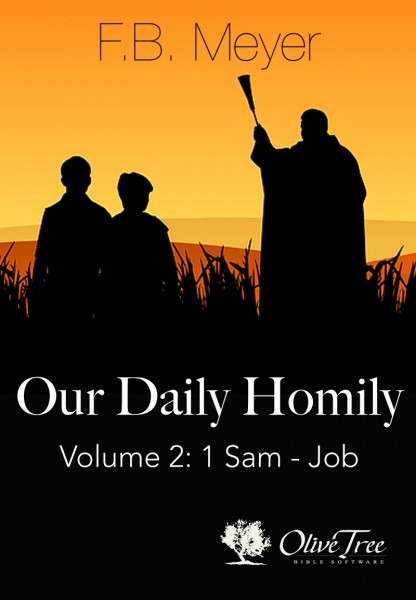 Our Daily Homily, Vol 2 (1 Sam - Job)