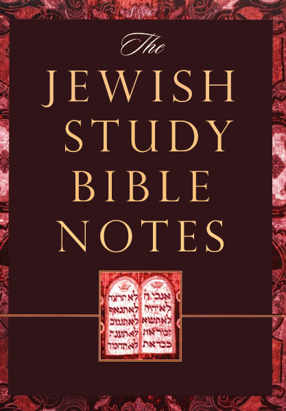 The Jewish Study Bible Notes