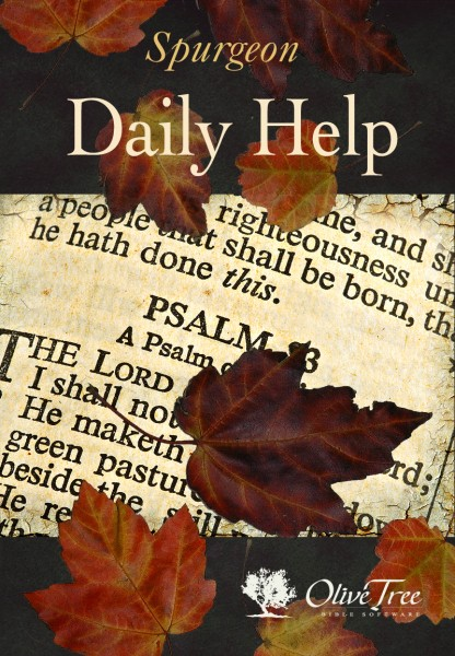 Daily Help