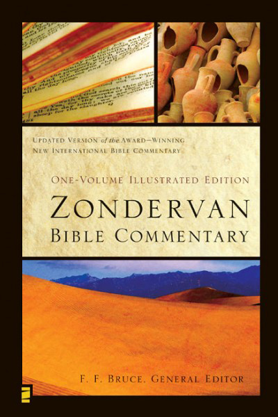 zondervan niv study bible free download for pc